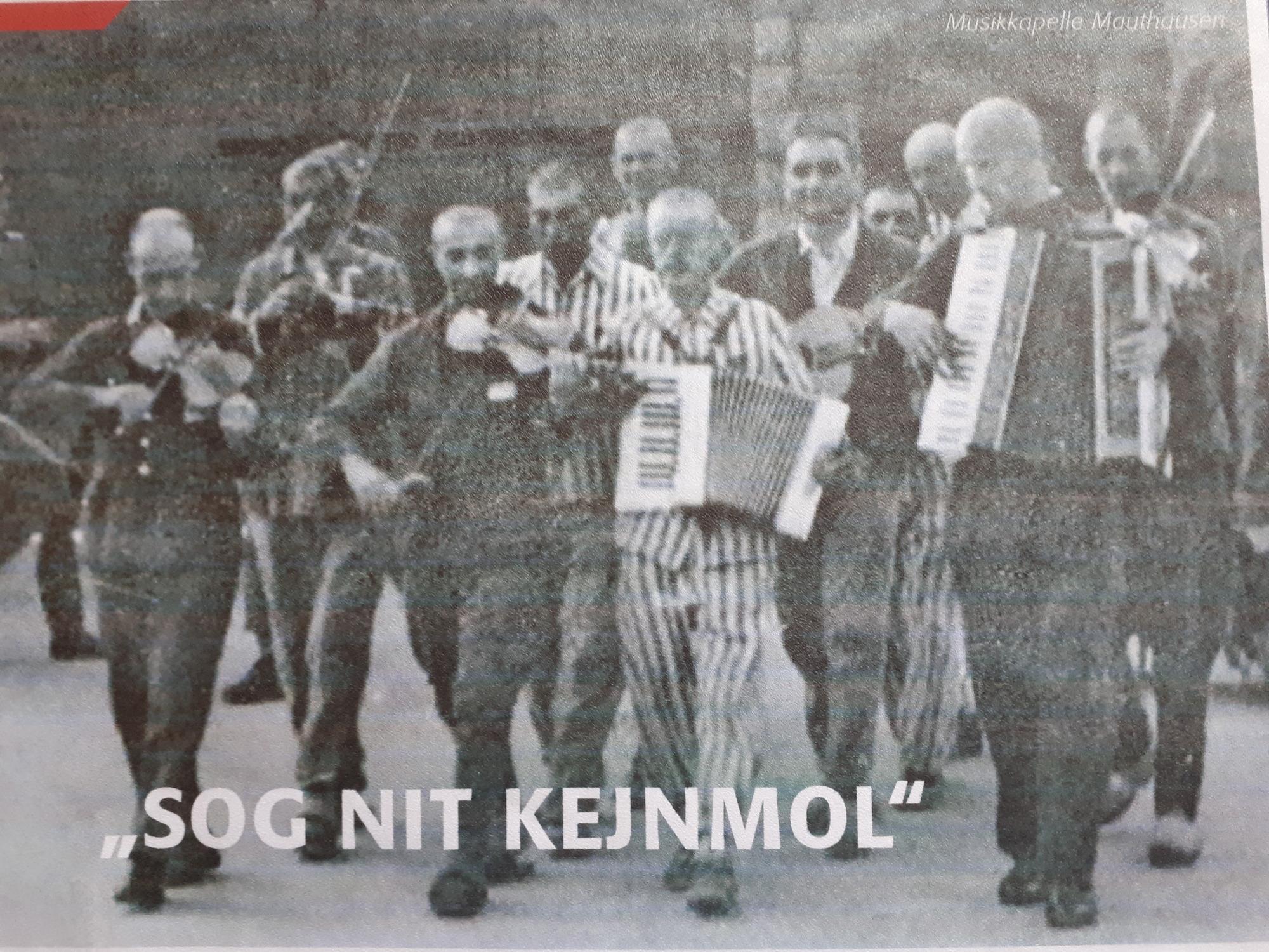 Bild für Szenische Lesung im Hamburger Rathaus am 28.1.2019